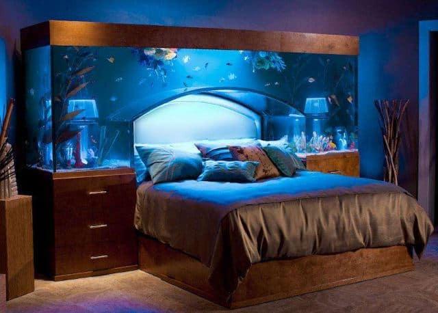 Headboard Aquarium Bed Setup