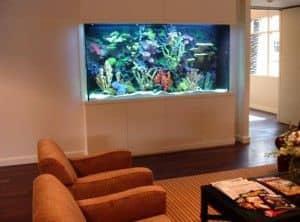 Steven Spielberg's office Aquarium