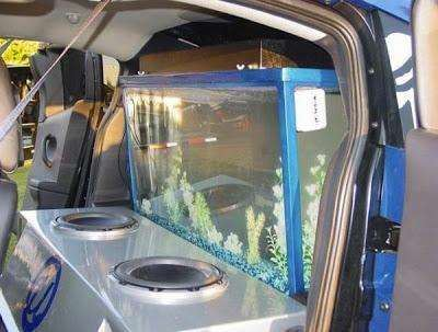 Usher's fish tank for the trunk of his car