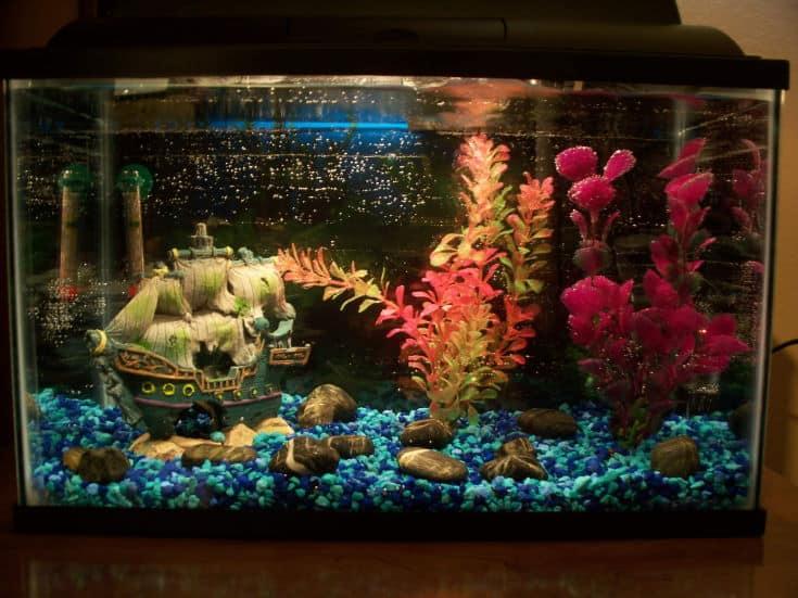 Pirate Ship decor fish tank