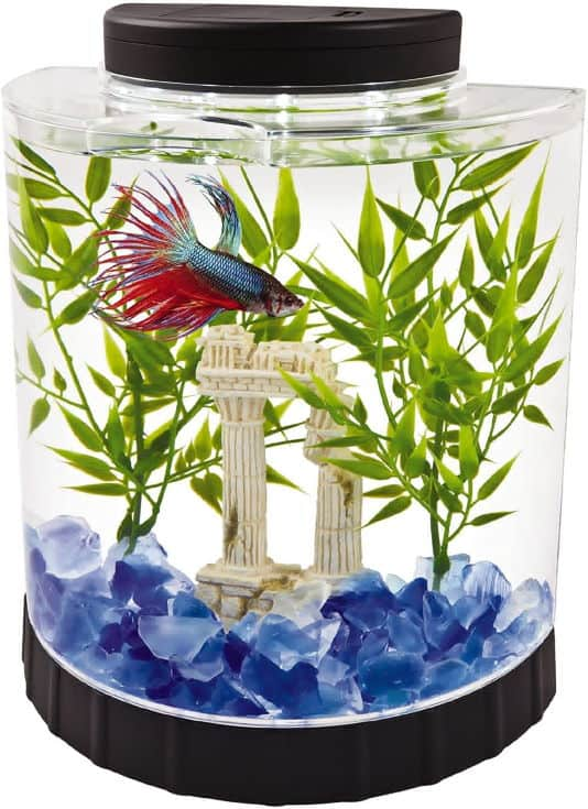 Tetra LED Half Moon aquarium Kit 1.1 Gallons, Ideal For Bettas, Black, 4.6 x 9.1 x 9.9 Inches